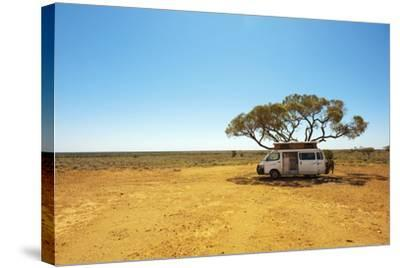 Finding Shade under a Lone Tree While Traveling in the Australian Outback in a Campervan.-Pics by Nick-Stretched Canvas Print