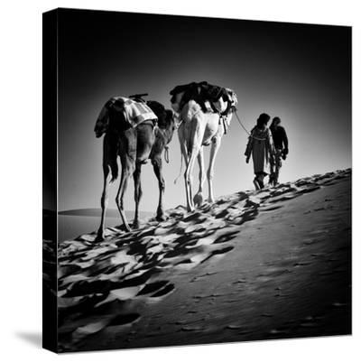 Square Black & White Image of 2 Men and 2 Camels in Sahara Desert-ABO PHOTOGRAPHY-Stretched Canvas Print