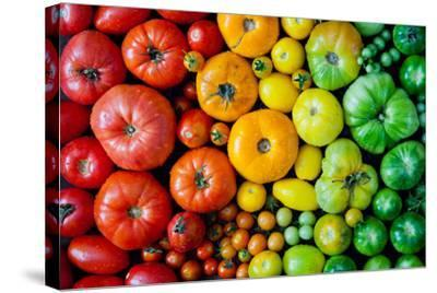 Fresh Heirloom Tomatoes Background, Organic Produce at a Farmer's Market. Tomatoes Rainbow.-Letterberry-Stretched Canvas Print