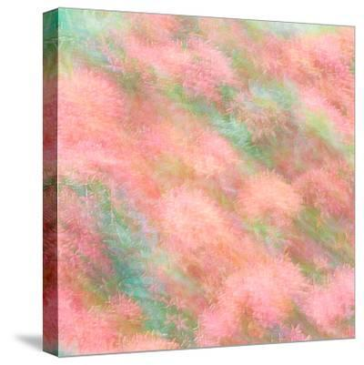 Dreamland-Steven Maxx-Stretched Canvas Print