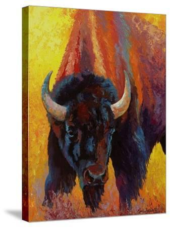 Back Off Bison-Marion Rose-Stretched Canvas Print