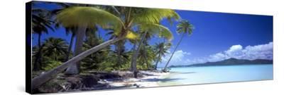 0130 Tropical Paradise-Doug Cavanah-Stretched Canvas Print