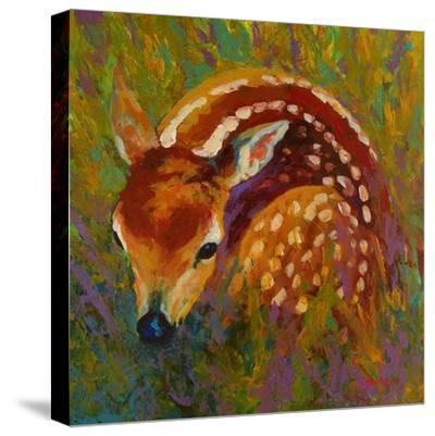 New Fawn-Marion Rose-Stretched Canvas Print