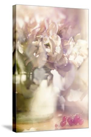 From an English Garden-Valda Bailey-Stretched Canvas Print