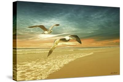 Soft Sunrise on the Beach 6-Carlos Casamayor-Stretched Canvas Print