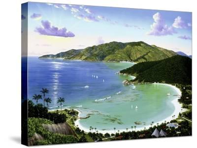 Little Dix Bay - Virgin Islands-Eduardo Camoes-Stretched Canvas Print