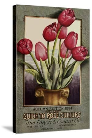 Red Roses-Vintage Apple Collection-Stretched Canvas Print