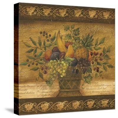 Abundance I-Kimberly Poloson-Stretched Canvas Print