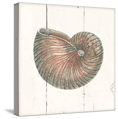 Shell Sketches III Shiplap-Wild Apple Portfolio-Stretched Canvas Print