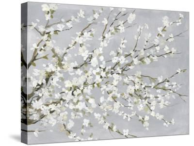 White Blossoms-Asia Jensen-Stretched Canvas Print