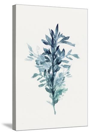 Botanical III-Isabelle Z-Stretched Canvas Print