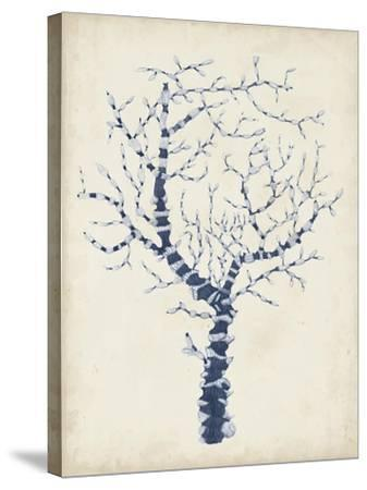 Indigo Coral II-Vision Studio-Stretched Canvas Print