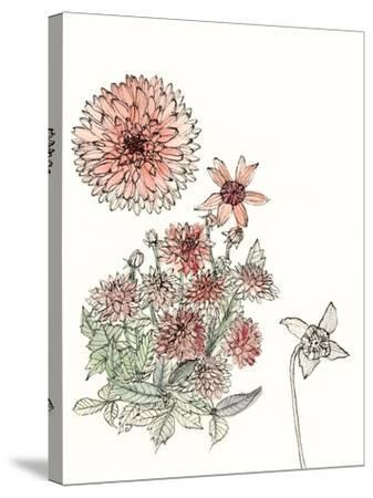 Dahlia Study-Melissa Wang-Stretched Canvas Print