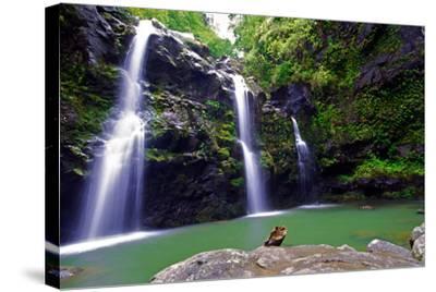Waikamoi Falls On The Road To Hana-George Oze-Stretched Canvas Print