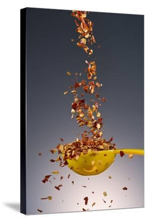 1 Tablespoon Red Pepper Flakes-Steve Gadomski-Stretched Canvas Print