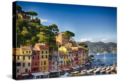 Colorful Harbor Houses in Portofino, Liguria, Italy-George Oze-Stretched Canvas Print