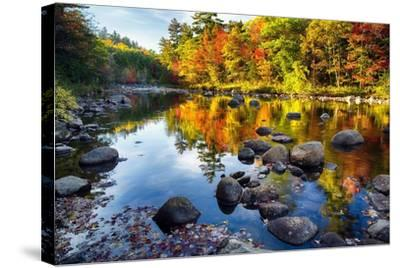 Colorful Trees Along the Swift River New Hampshire-George Oze-Stretched Canvas Print