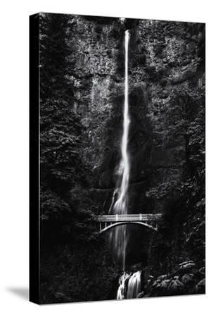Multnomah Falls 1 mono-John Gusky-Stretched Canvas Print