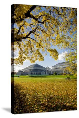 Kew Temperate House-Charles Bowman-Stretched Canvas Print