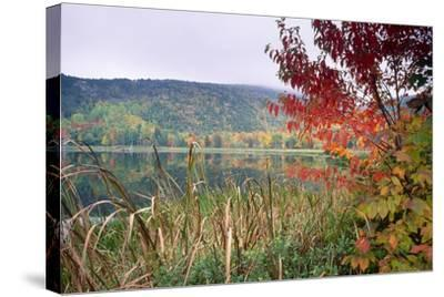 Autumn Scenic, Acadia National Park, Maine-George Oze-Stretched Canvas Print
