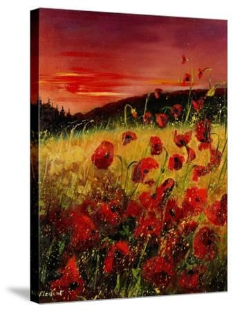 Red Poppies Sunset-Pol Ledent-Stretched Canvas Print