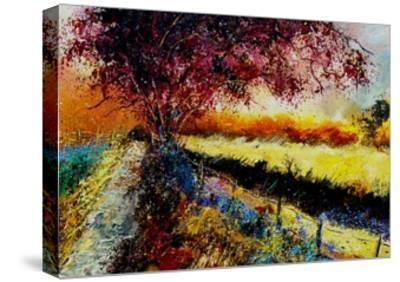 Fall In Gendron 2-Pol Ledent-Stretched Canvas Print