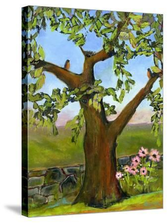 Robins Nest in a Tree-Blenda Tyvoll-Stretched Canvas Print