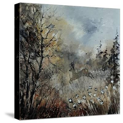 Roe Deer-Pol Ledent-Stretched Canvas Print