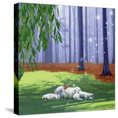 Asleep With Sheep-Nancy Tillman-Stretched Canvas Print