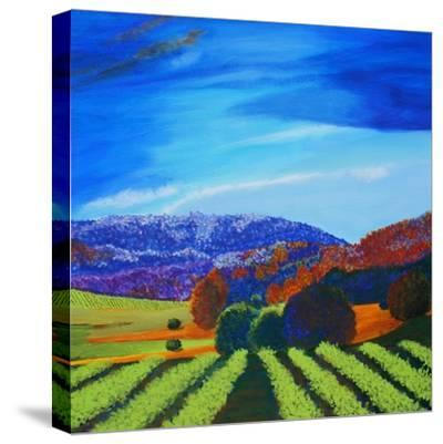Napa Valley-Herb Dickinson-Stretched Canvas Print