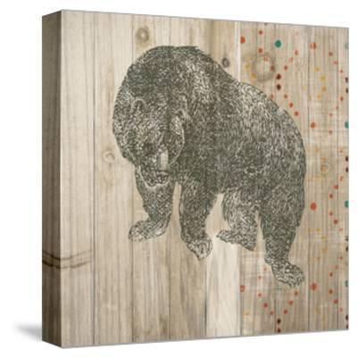 Natural History Lodge Southwest IV-Wild Apple Portfolio-Stretched Canvas Print