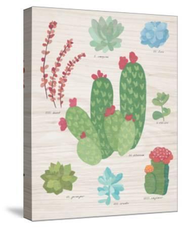 Succulent Chart IV on Wood-Wild Apple Portfolio-Stretched Canvas Print