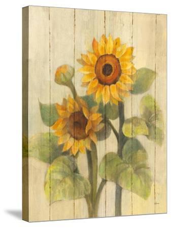 Summer Sunflowers II on Barnboard-Albena Hristova-Stretched Canvas Print