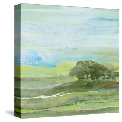 Savannah-Albena Hristova-Stretched Canvas Print