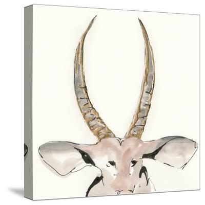 Gilded Antelope-Chris Paschke-Stretched Canvas Print