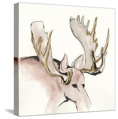 Gilded Moose-Chris Paschke-Stretched Canvas Print