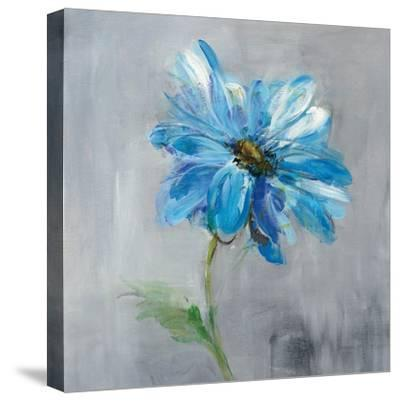 Floral Bloom I-Danhui Nai-Stretched Canvas Print