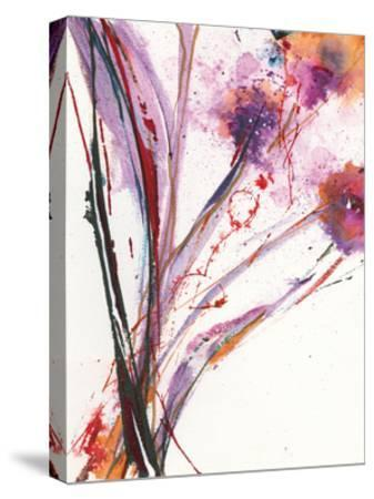 Floral Explosion III-Jan Griggs-Stretched Canvas Print