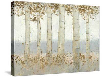 Magnificent Birch Grove-James Wiens-Stretched Canvas Print