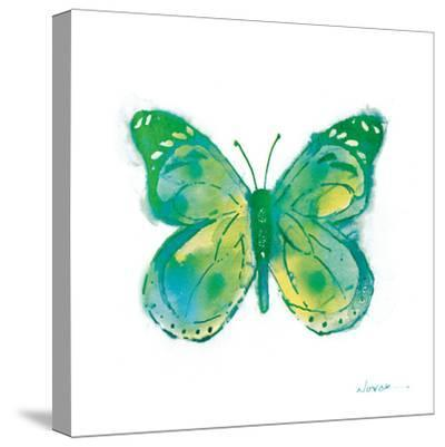 Birdsong Garden Butterfly I on White-Shirley Novak-Stretched Canvas Print