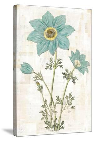 Bloemen Boek VII-Sue Schlabach-Stretched Canvas Print