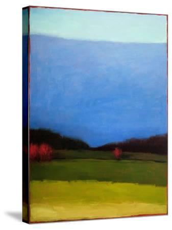 Under a Blue Sky-Tracy Helgeson-Stretched Canvas Print