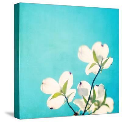 A Life So Colorful-Carolyn Cochrane-Stretched Canvas Print