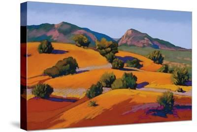 Juniper Hills-Mary Silverwood-Stretched Canvas Print
