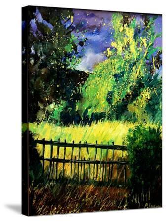 Old fence-Pol Ledent-Stretched Canvas Print
