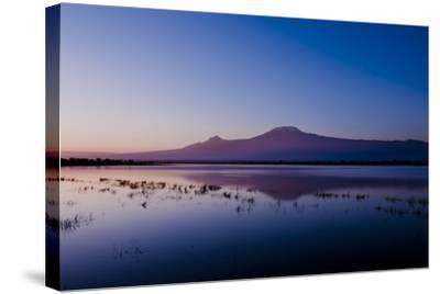 Kilimanjaro II-Charles Bowman-Stretched Canvas Print