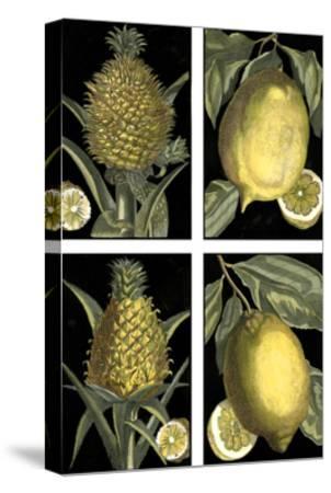 Miniature Fruit--Stretched Canvas Print