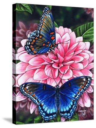 Red Spotted Purple-Marilyn Barkhouse-Stretched Canvas Print