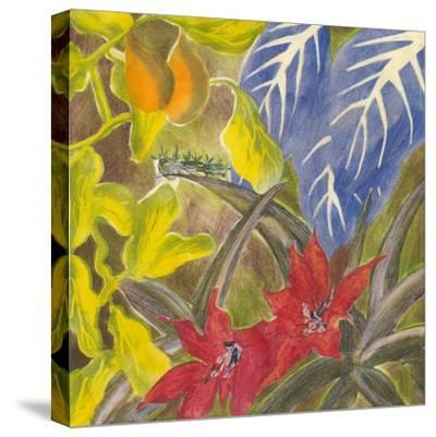 Tropical Monotype I-Carolyn Roth-Stretched Canvas Print