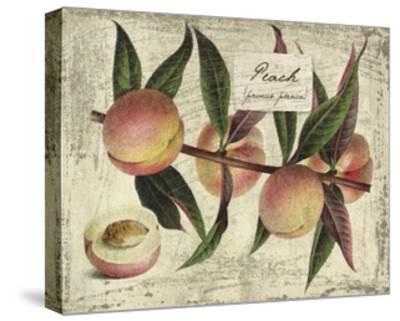Fresco Fruit IX-Kate Ward Thacker-Stretched Canvas Print